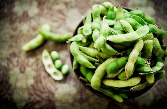 Protein hoàn chỉnh | Giới thiệu 10 loại thực phẩm cung cấp protein hoàn chỉnh| Ensure®